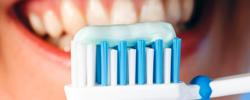 歯周病予防歯科